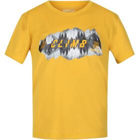 Regatta Alvarado V T-Shirt Enfant, jaune